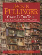 Link to Crack in the Wall at Barnes and Noble